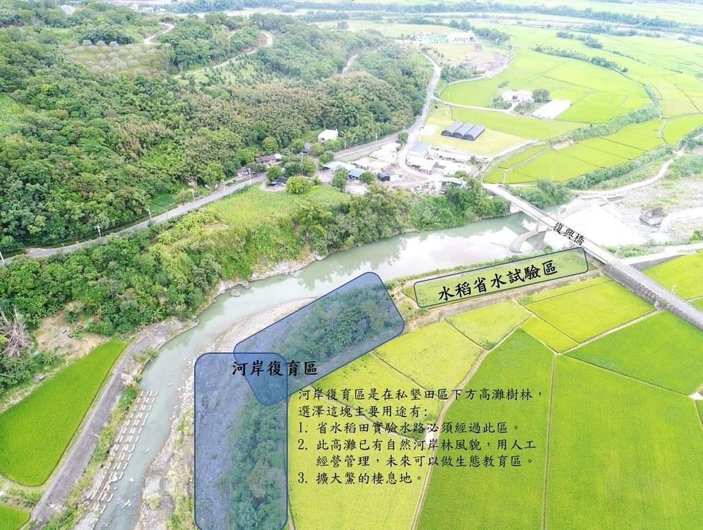 水利署九河局以一連串的計畫,復育鱉溪河川生態,今年以省水稻試驗,要還水給鱉溪。圖片來源:九河局提供