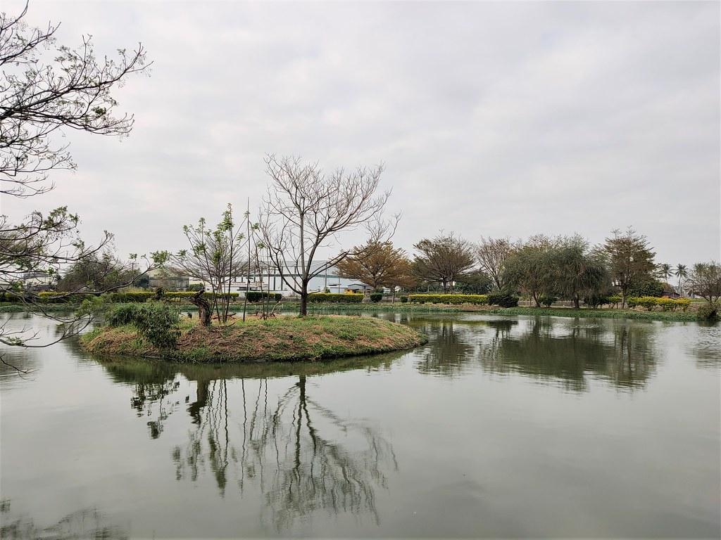 大林濕地 (4)