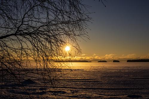 canon6d landscape nature outdoors outside sun sunrise sea frozensea espoo finland trees silhouette coast