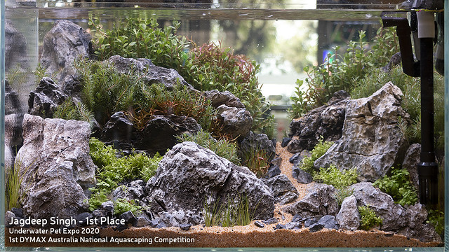 UPE 2020 - Dymax Australian Aquascape Competition