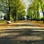 Walkway at Haslam Park, Preston