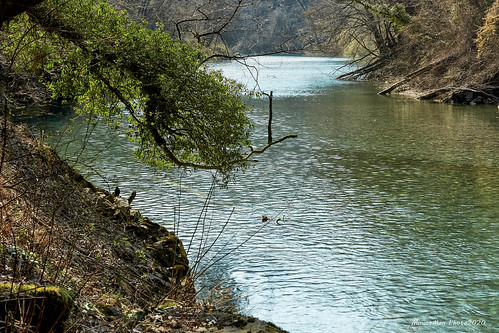 rijekarječina grobnik rijeka primorskogoranska croatia landscape river voda water flickrunitedaward