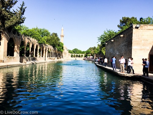 Gölbaşı and the Pool of Sacred Fish (Balıklı Göl) in Sanliurfa. From A Hidden Gem in Southeastern Turkey: Visit Şanlıurfa