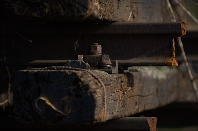 Rusty  -    Along abandoned train track