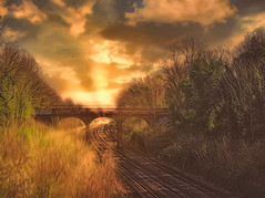 """Sunlight on the tracks"""