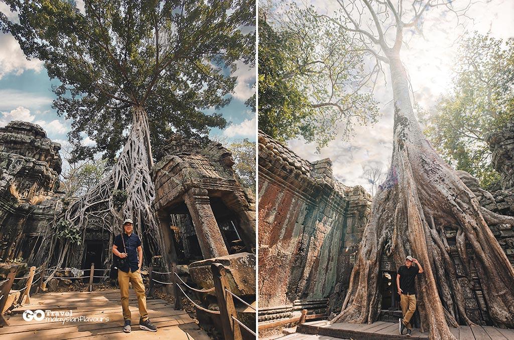 Ta-Prohm-Temple-3