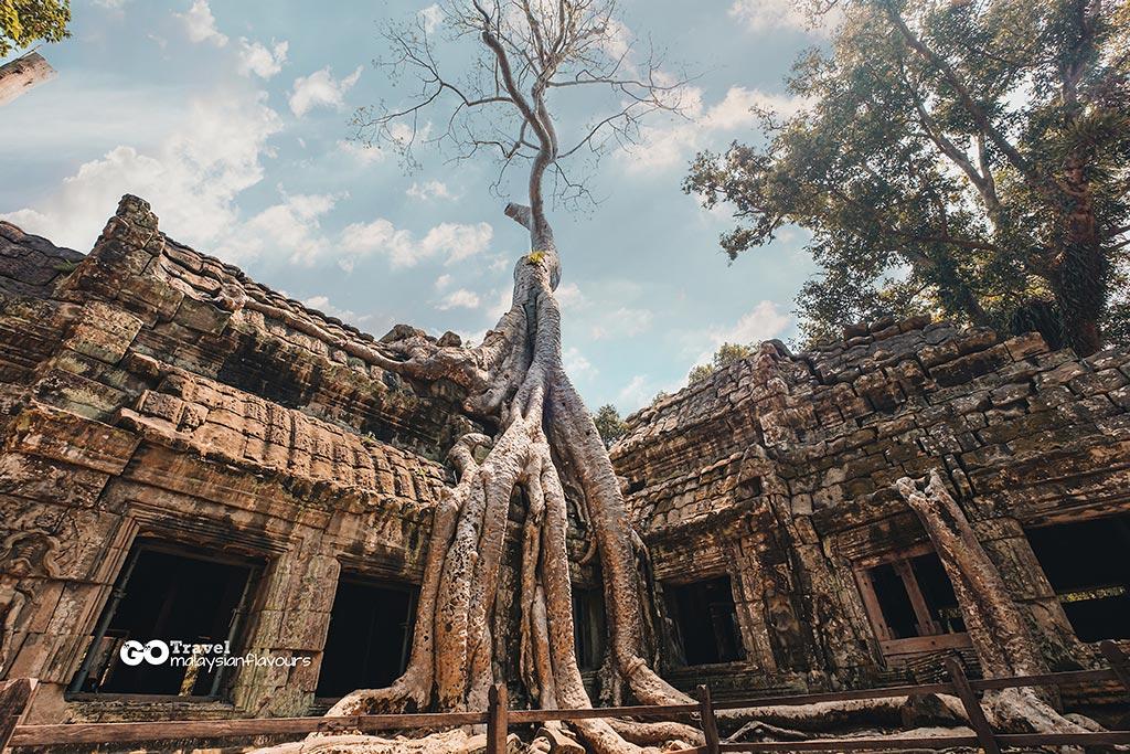 Ta-Prohm-Temple-1