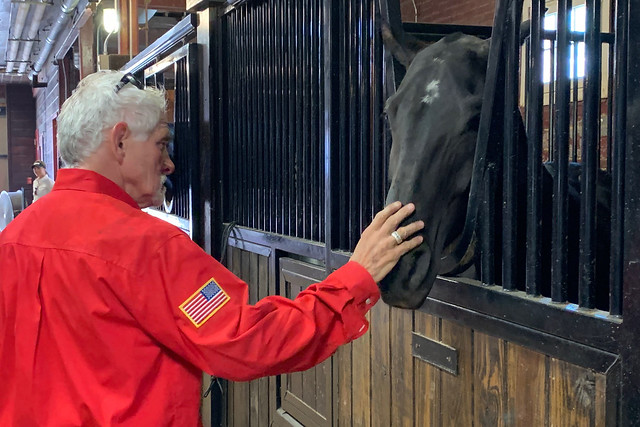 Army Vietnam veteran Bill Mercurio pets one of the caisson platoon horses from the 3rd U.S. Infantry Regiment