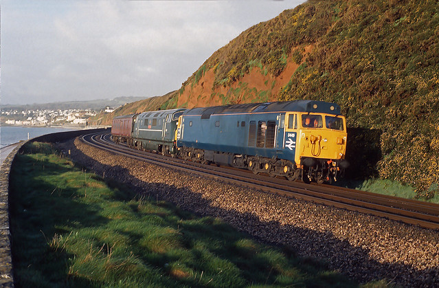D449 Dawlish