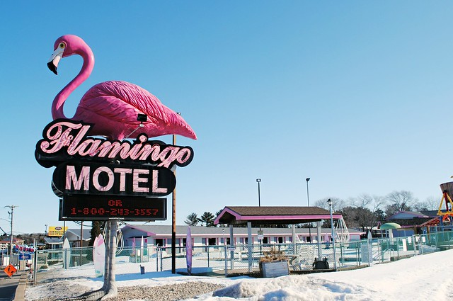 Flamingo Motel - Wisconsin Dells
