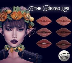 Voodoo - Makeup Vendor Dryad Catwa