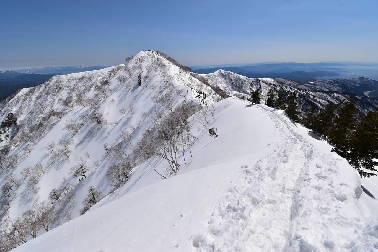 冬の中遠見山