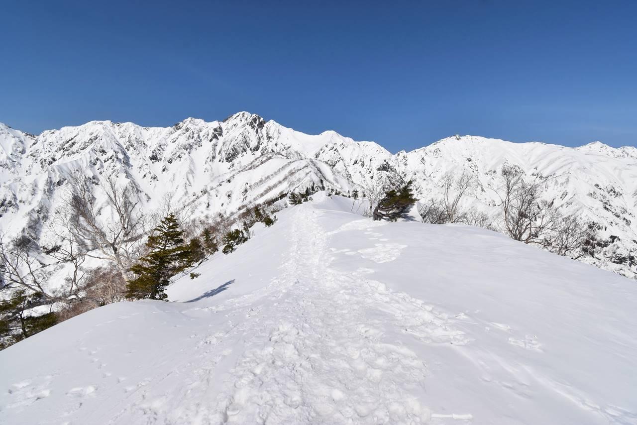 冬の遠見尾根 雪の稜線