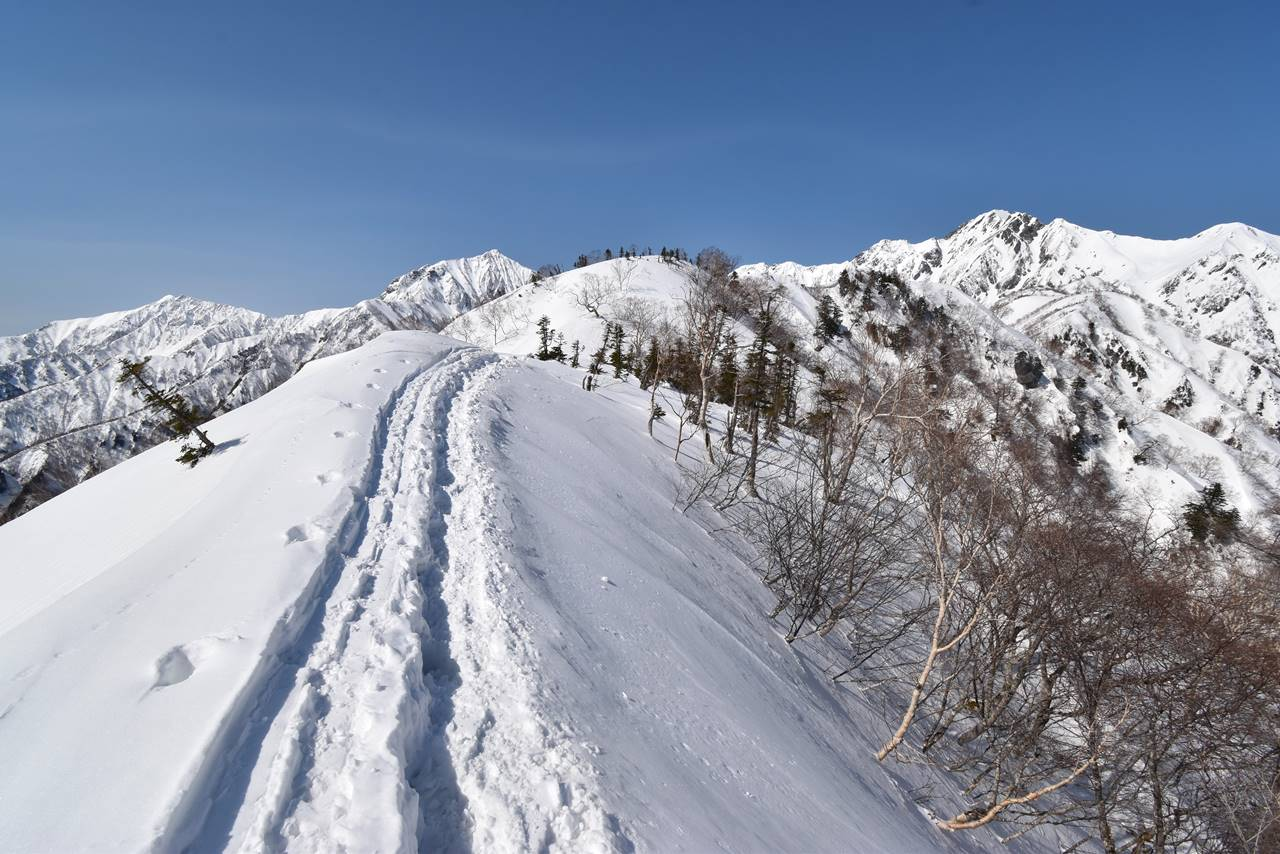 冬の遠見尾根 ナイフリッジの雪の稜線
