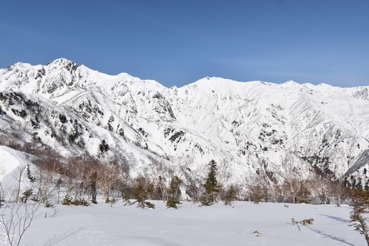 遠見尾根から眺める五竜岳~唐松岳~白馬岳