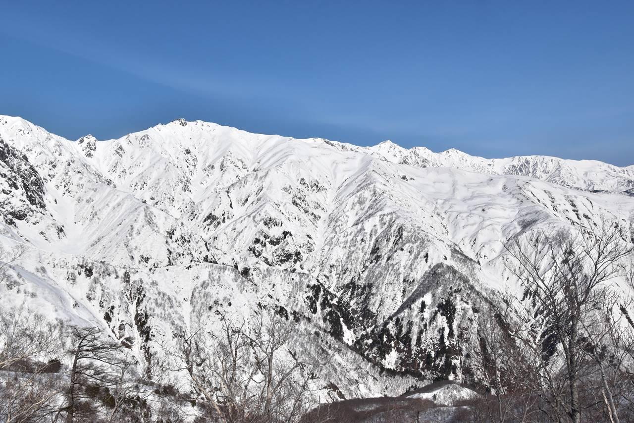 遠見尾根から眺める唐松岳と白馬三山