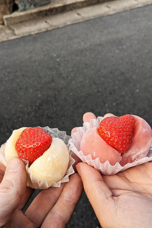 43kyoto-japan-food-snack-mochi-travel