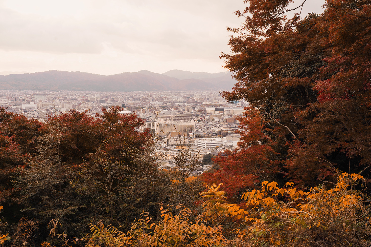 40kyoto-mtinari-summit-landscape-japan-travel