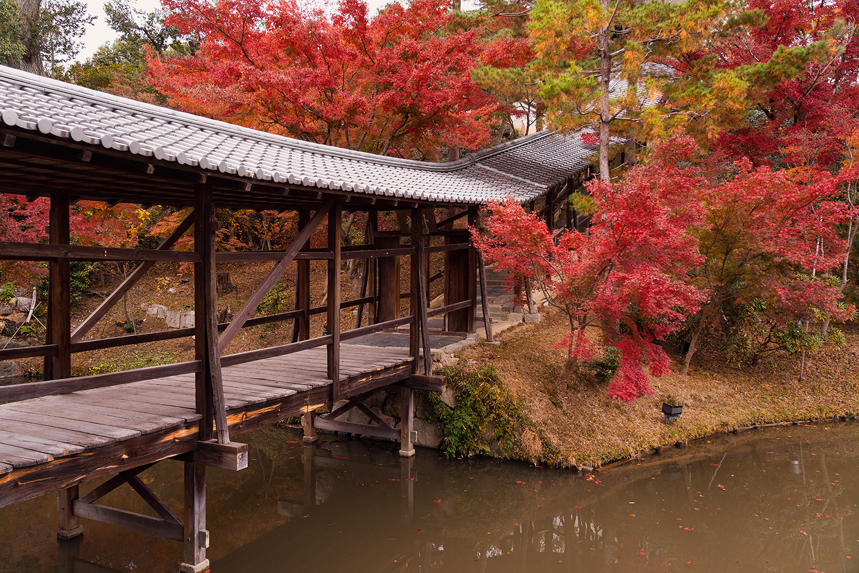 27kyoto-kodaiji-architecture-japan-travel
