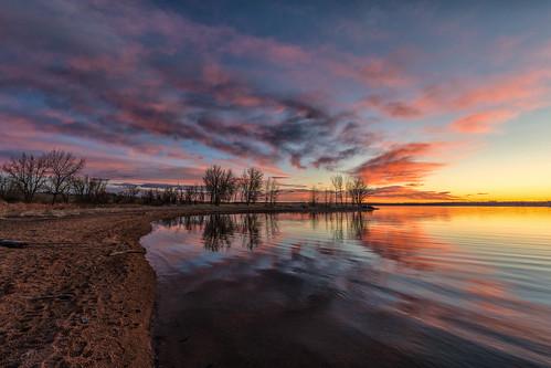 sunrise dawn daybreak lakechatfield chatfieldstatepark colorado trees pond reflections landscape beach landscapes