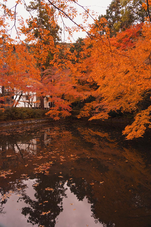 19kyoto-kiyomizudera-autumn-landscape-japan-travel