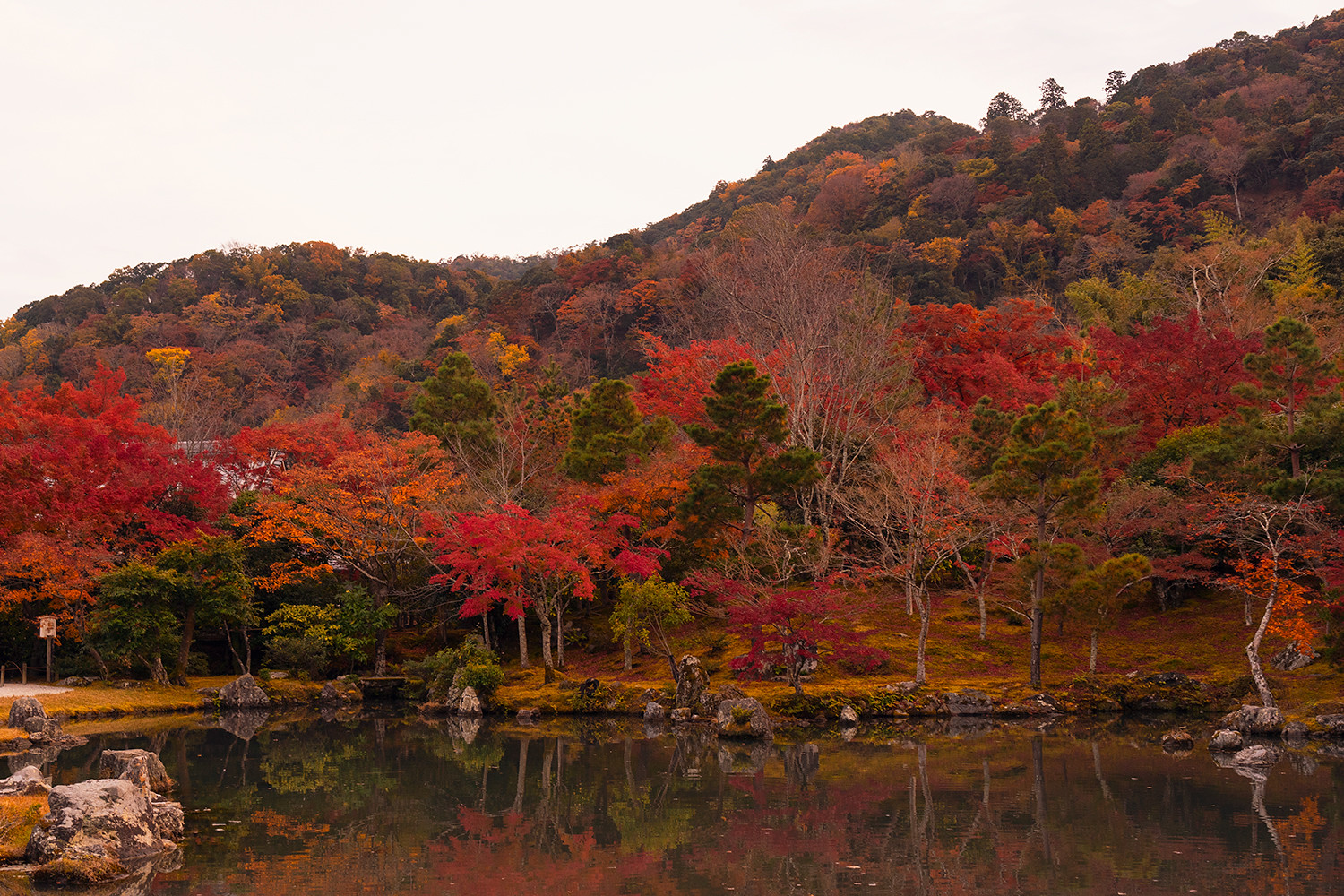 12kyoto-tenryuji-japan-landscape-autumn-travel