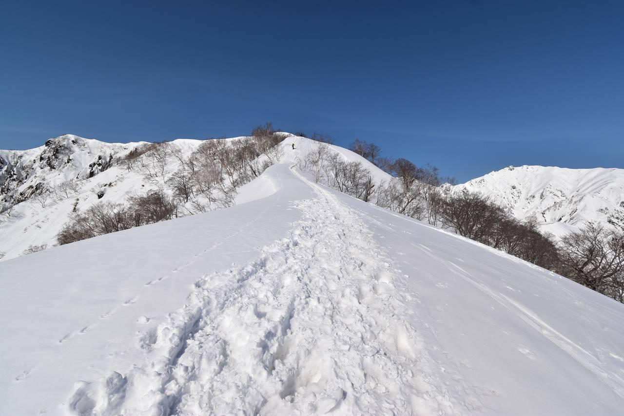 冬の遠見尾根