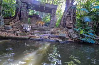 Tiger Jungle Cruise DL | by gamecrew7