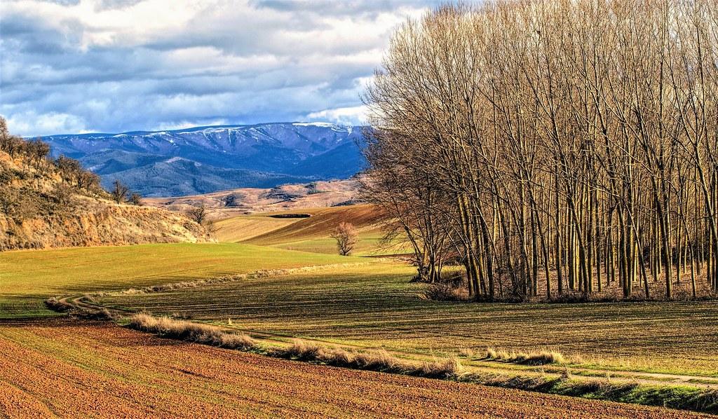 Por tierras  de Berceo. La Rioja.