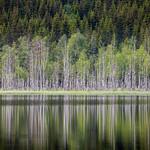 Skrukkelisjøen, June 26, 2019