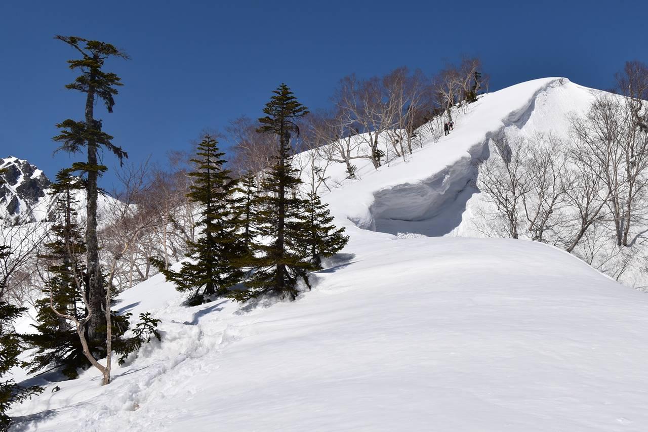 遠見尾根の雪庇