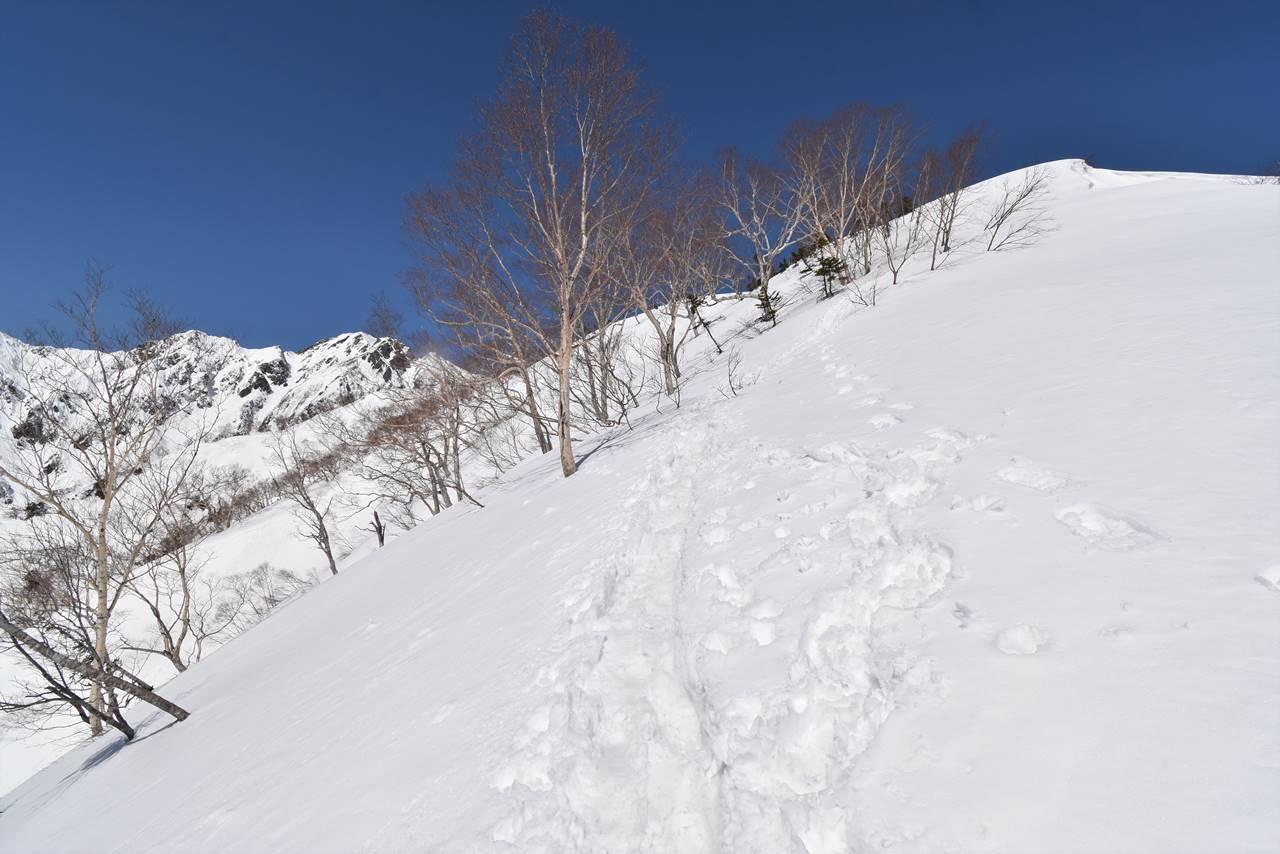 雪の遠見尾根登山