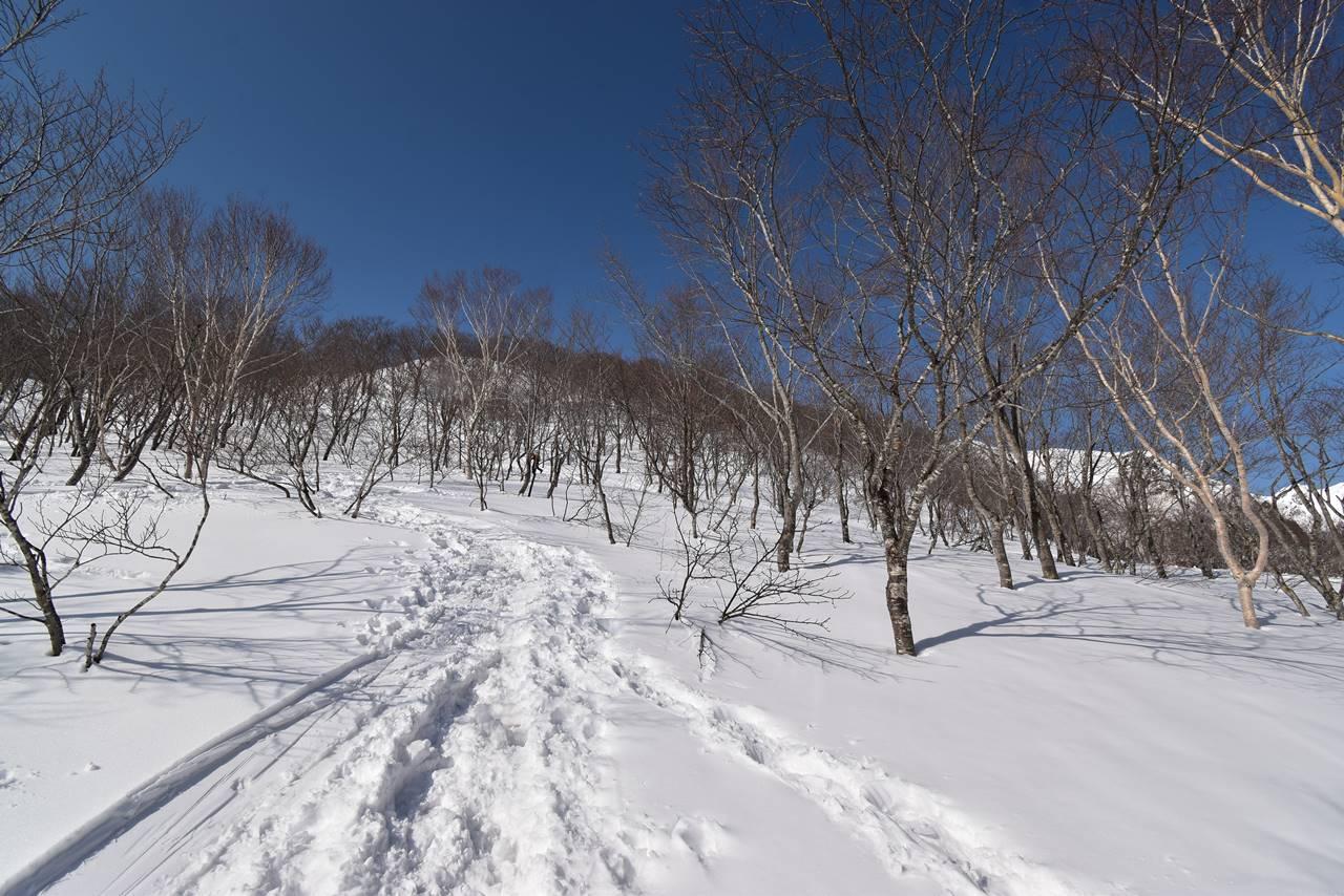 冬の遠見尾根登り開始
