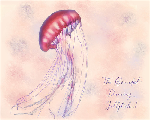 Image of a traditional jellyfish with a watercolor effect