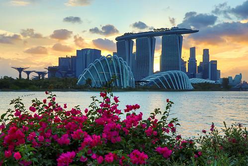 img5509 singapore