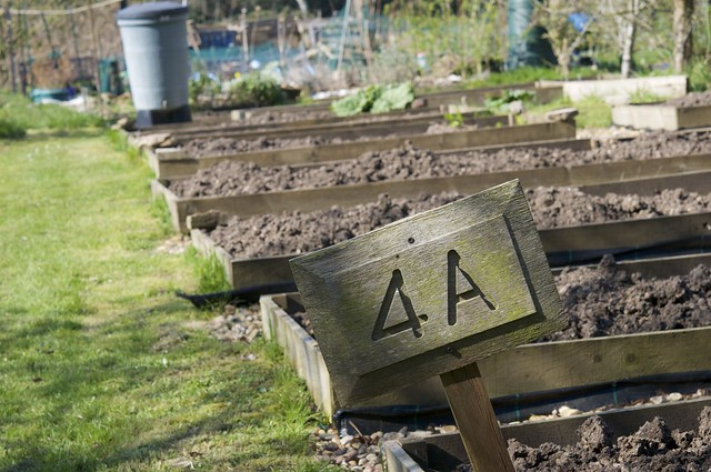 Plot 4A on the allotment