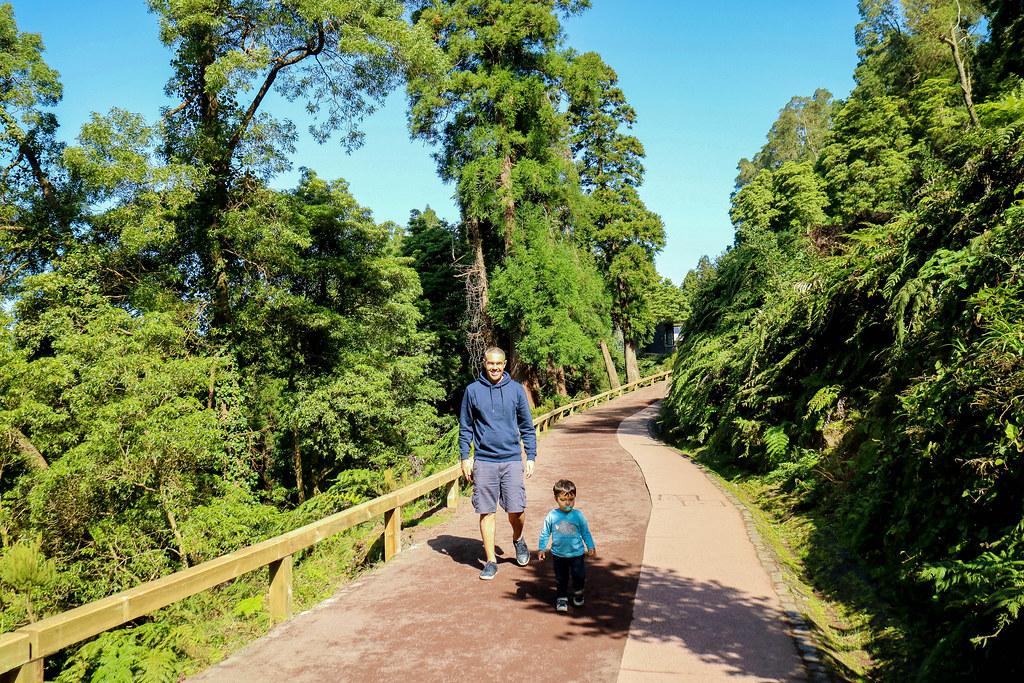 Camino por el interior de Caldiera Velha en Sao Miguel