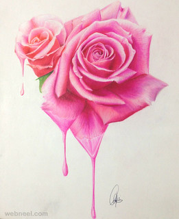 Color Pencil Flower Drawing