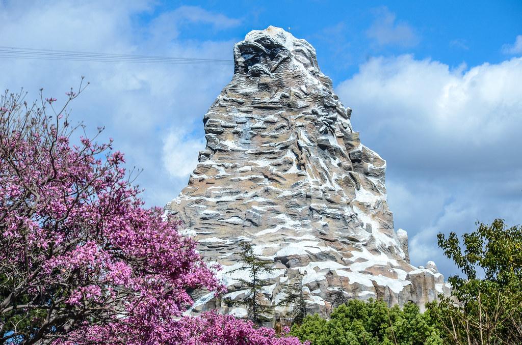 Matterhorn Pink Tree