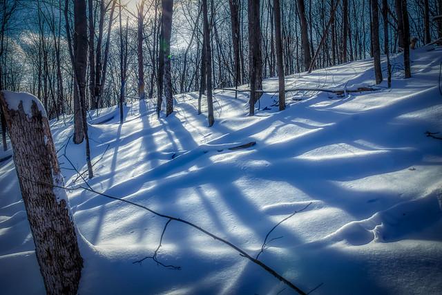 Winter's Grip