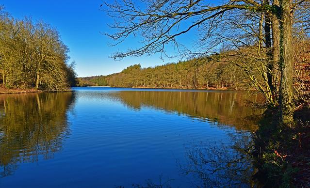 200101_WAN_E_D_NRW-RG-Heilenb.Talsp.(30) - Stille am See /Silence at the lake