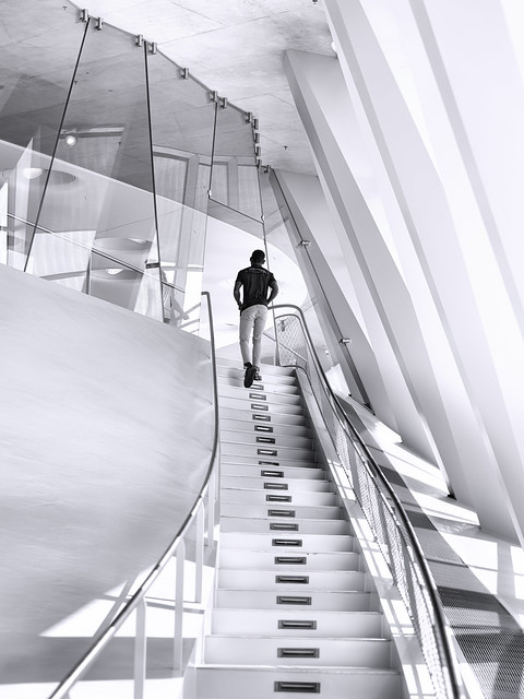 Walking up the Stairs of our Concepts