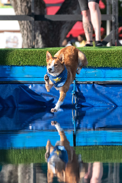 One Giant Leap, Florida State Fair