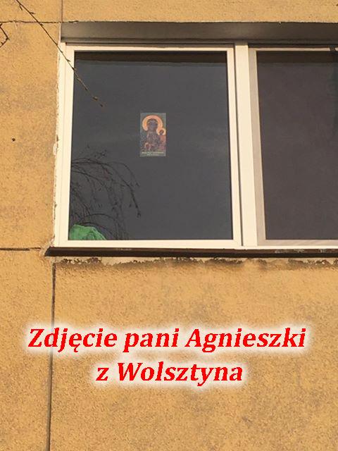 agnieszka_wolsztyn