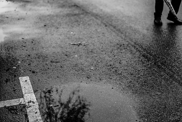Un bout de rue, l'asphalte, une flaque, un reflet. Un homme et son parapluie. La vie.