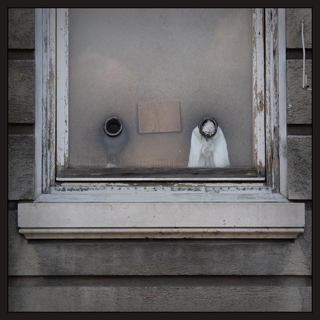 Trauriges Fenster...?...