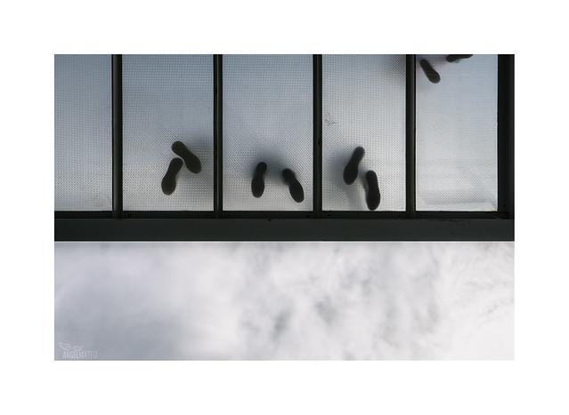 Balcones, en tiempos difíciles...