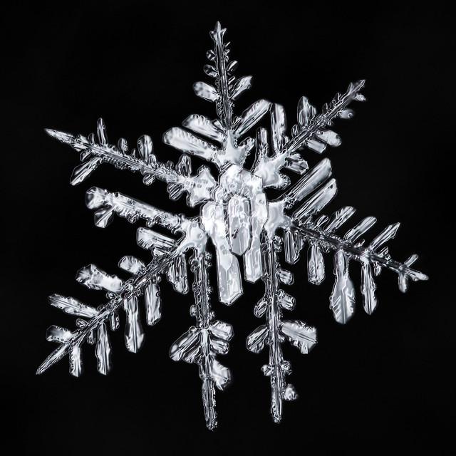 Snowflake 886