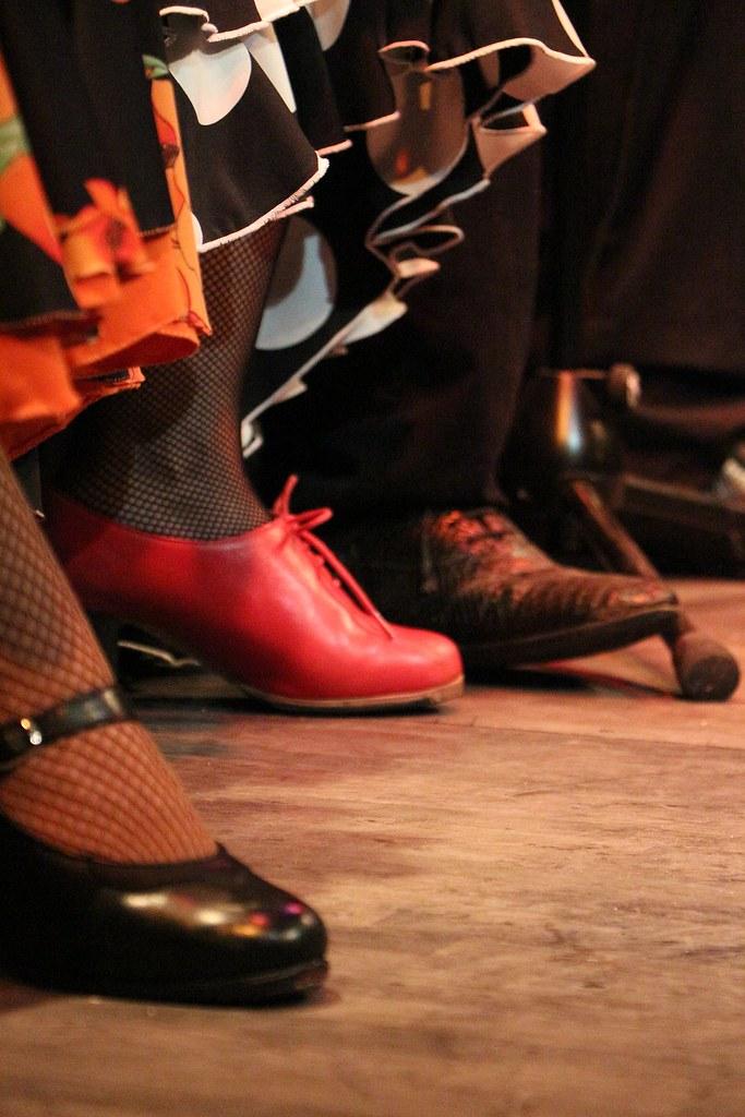 flamenco-3989704_1920