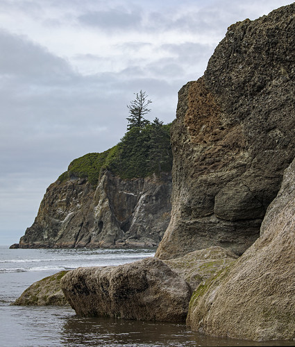 Ruby Beach | by dfwatsoneuro